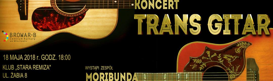 trans gitar slider