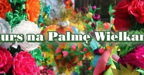 baner-palma