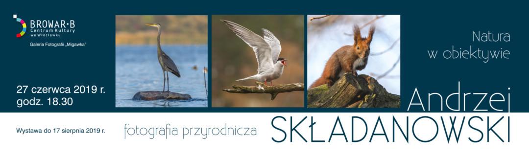 slajder 1920 x575 ckbb Skladanowski