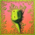 Zielonomordziak różowogały - akryl na płótnie, 40x40 cm, 2019