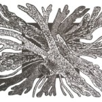 Ognisko, 53x41cm, linoryt, 2020 r.