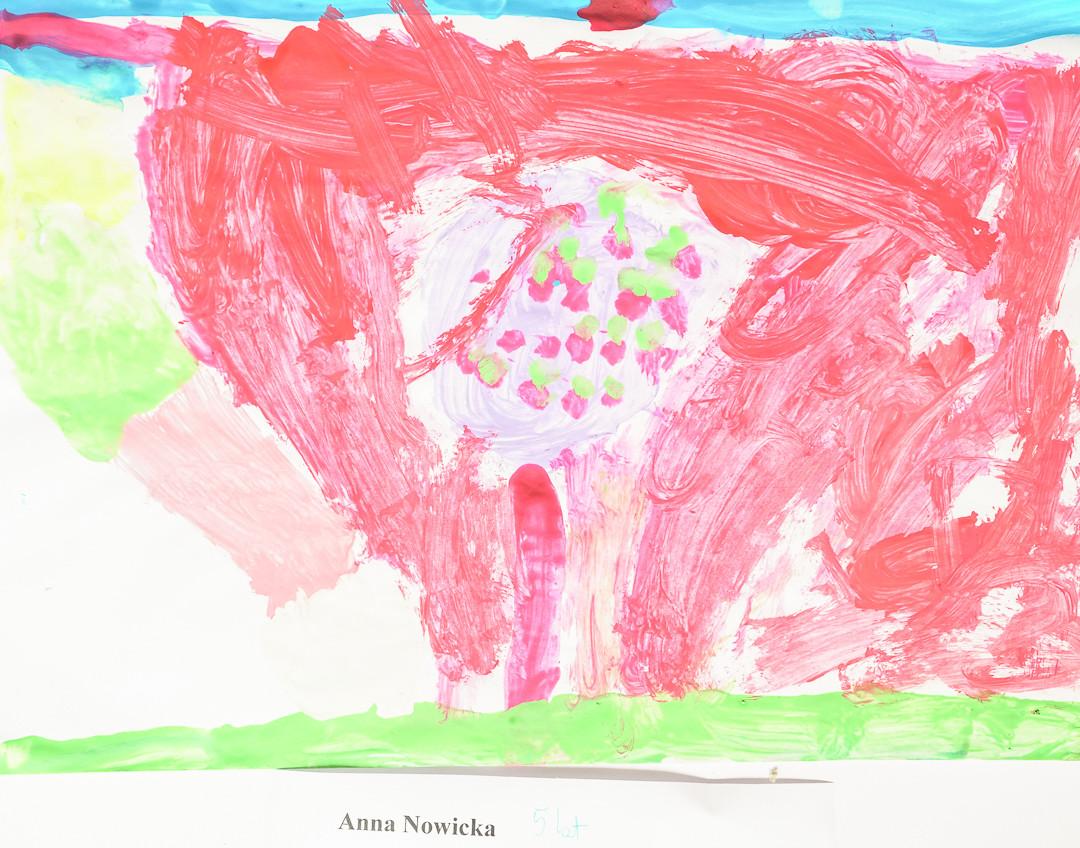 Anna Nowicka (5 lat), Techniki Eksperymentalne
